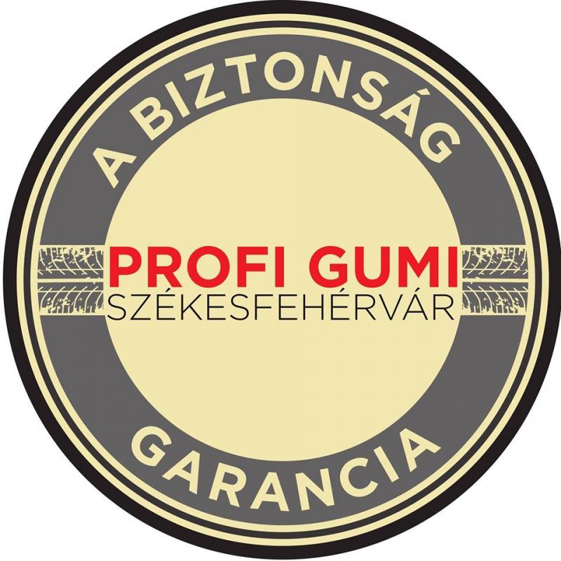 Gumiszerviz Fejér megye
